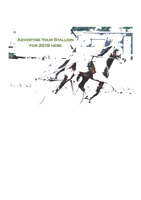 Advertise Stallion 2018