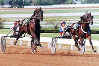 Pine Chip vs. American Winner Kentucky Futurity 1993